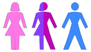 Three or more genders?