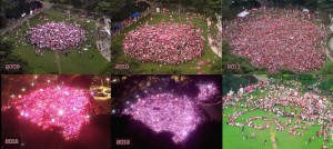 Pink Dot 2009-2014 Freedom to Love Singapore