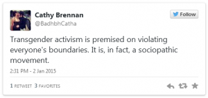 Cathy Brennan Twitter 3 Jan 15