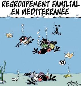 Ali Dilem, Liberté 'Regroupement familial' cartoon