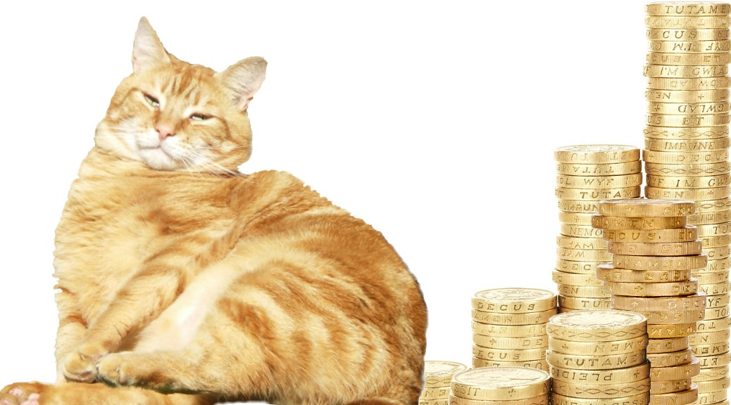 Fat Cat Tuesday moggy on mounds of cash #FatCatTuesday