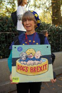 Dog's Brexit